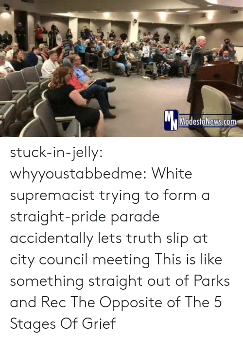 Council: Mc  ModestoNews.com stuck-in-jelly:  whyyoustabbedme:   White supremacist trying to form a straight-pride parade accidentally lets truth slip at city council meeting   This is like something straight out of Parks and Rec       The Opposite of The 5 Stages Of Grief