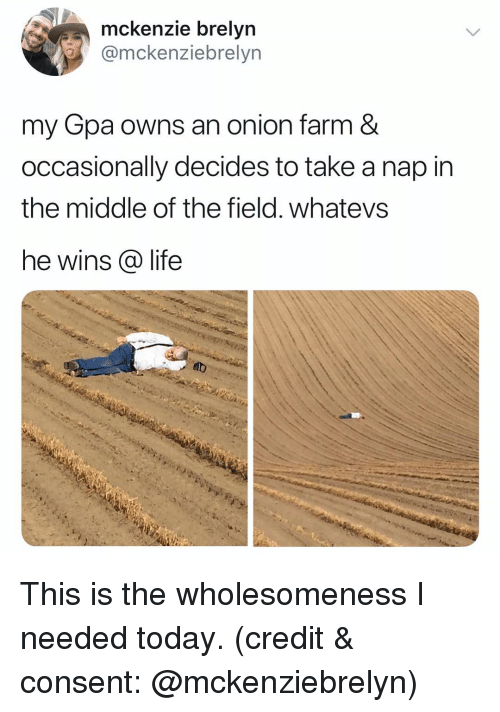 Whatevs: mckenzie brelyn  omckenziebrelyn  my Gpa owns an onion farm &  occasionally decides to take a nap in  the middle of the field. whatevs  he wins @ life This is the wholesomeness I needed today. (credit & consent: @mckenziebrelyn)