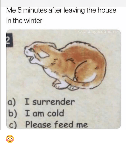 Funny, Winter, and House: Me 5 minutes after leaving the house  in the winter  Qcdbbagecdtmemes  a) I surrender  b) I am cold  c) Please feed me 😳