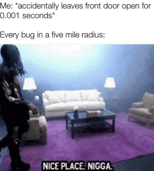 Front Door: Me: *accidentally leaves front door open for  0.001 seconds*  Every bug in a five mile radius:  NICE PLACE NIGGA.