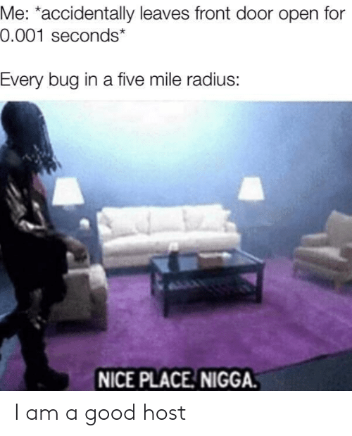 Good, Nice, and Radius: Me: *accidentally leaves front door open for  0.001 seconds*  Every bug in a five mile radius:  NICE PLACE NIGGA. I am a good host
