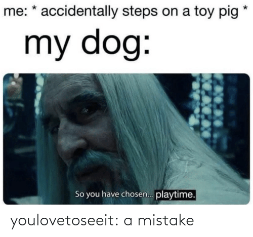 Playtime: me: * accidentally steps on a toy pig  my dog:  So you have chosen. playtime. youlovetoseeit:  a mistake