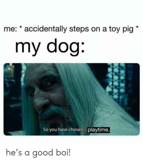 toy: me: * accidentally steps on a toy pig  my dog:  So you have chosen. playtime. he's a good boi!