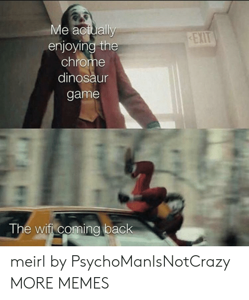 chrome: Me actually  enjoying the  chrome  EXIT  dinosaur  game  The wifi coming back meirl by PsychoManIsNotCrazy MORE MEMES
