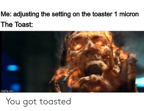Reddit, Toast, and Got: Me: adjusting the setting on the toaster 1 micron  The Toast:  imgflip.com You got toasted
