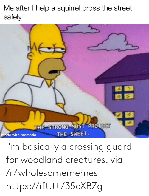 Must Protect: Me after I help a squirrel cross the street  safely  THE STRONG MUST PROTECT  THE SWEET.  made with mematic I'm basically a crossing guard for woodland creatures. via /r/wholesomememes https://ift.tt/35cXBZg