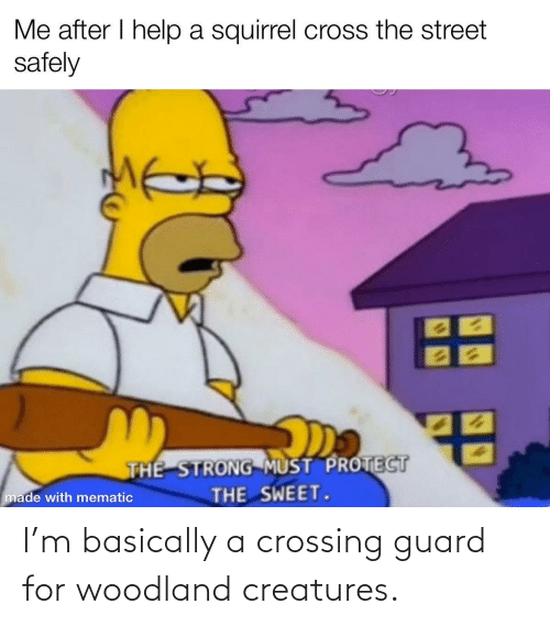 Basically: Me after I help a squirrel cross the street  safely  THE STRONG MUST PROTECT  THE SWEET.  made with mematic I'm basically a crossing guard for woodland creatures.