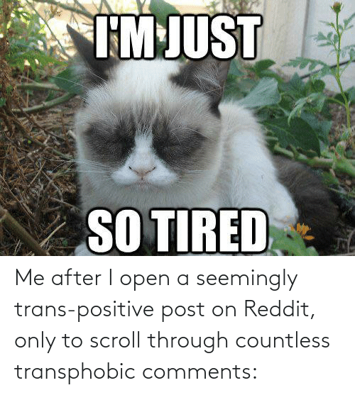 seemingly: Me after I open a seemingly trans-positive post on Reddit, only to scroll through countless transphobic comments: