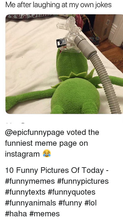 Funny Pictures Of: Me after laughing at my own jokes  @epicfunnypage voted the  funniest meme page on  instagram 10 Funny Pictures Of Today - #funnymemes #funnypictures #funnytexts #funnyquotes #funnyanimals #funny #lol #haha #memes