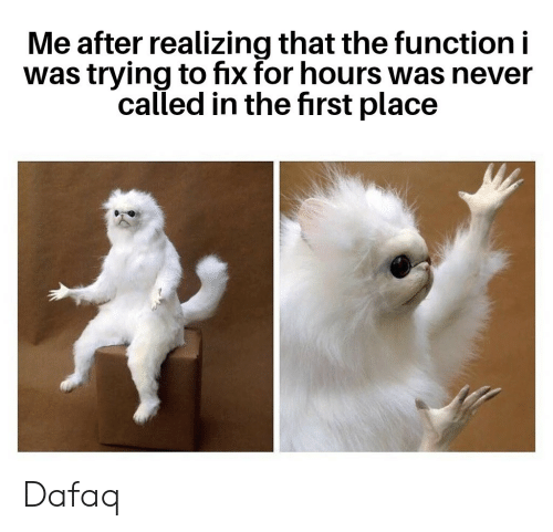 First Place: Me after realizing that the function i  was trying to fix for hours was never  called in the first place Dafaq