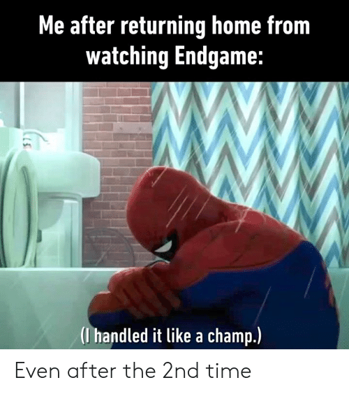 Dank, Home, and Time: Me after returning home from  watching Endgame:  (I handled it like a champ.) Even after the 2nd time