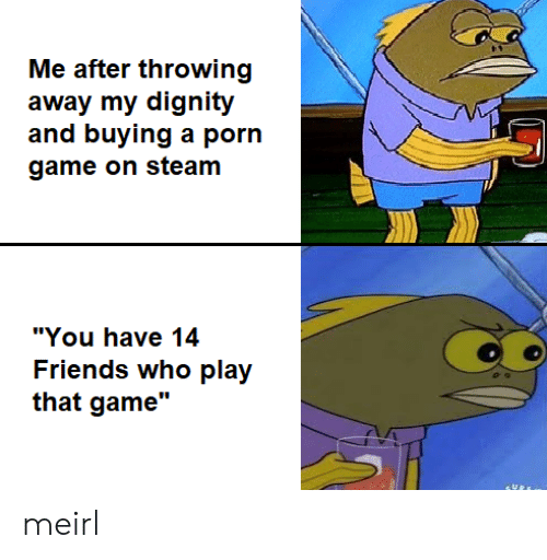 "Friends, Steam, and Game: Me after throwing  away my dignity  and buying a porn  game on steam  ""You have 14  Friends who play  that game"" meirl"