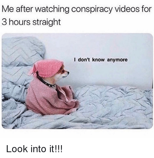 Memes, Videos, and Conspiracy: Me after watching conspiracy videos for  3 hours straight  l don't know anymore Look into it!!!