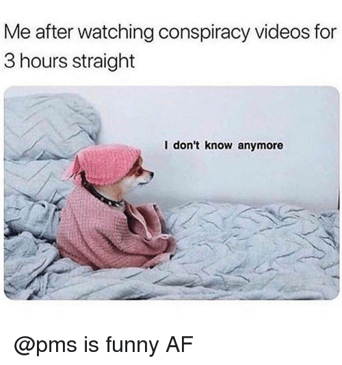 Funny Af: Me after watching conspiracy videos for  3 hours straight  l don't know anymore @pms is funny AF