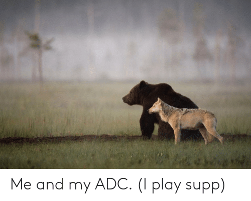 play: Me and my ADC. (I play supp)