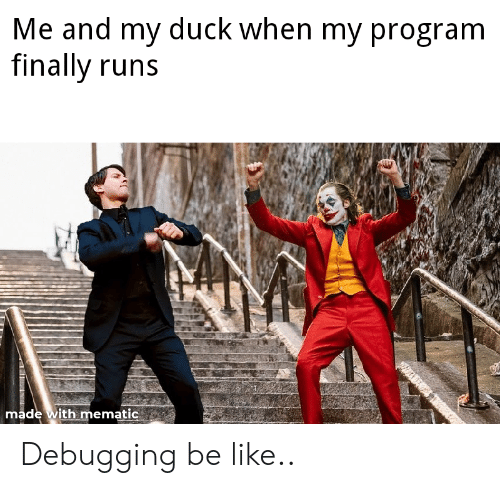 Be Like, Duck, and Program: Me and my duck when my program  finally runs  made with mematic Debugging be like..