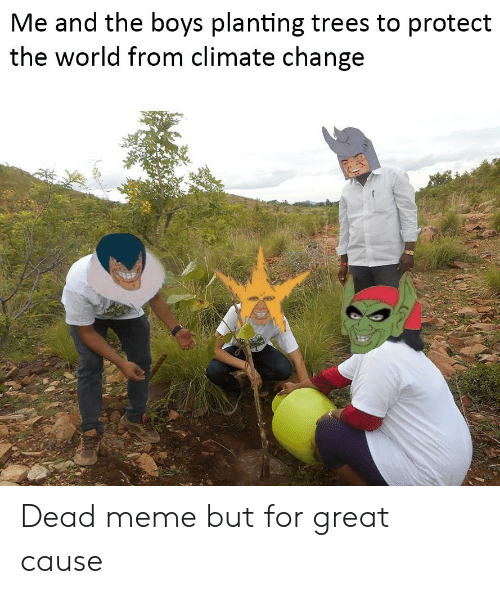 Meme, Trees, and World: Me and the boys planting trees to protect  the world from climate change Dead meme but for great cause
