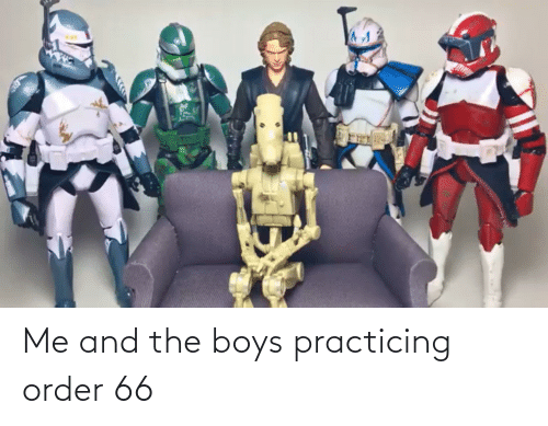 practicing: Me and the boys practicing order 66