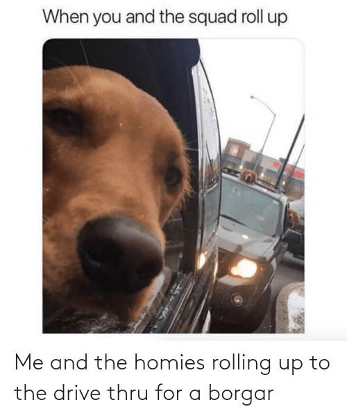 homies: Me and the homies rolling up to the drive thru for a borgar