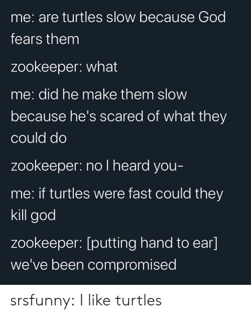 turtles: me: are turtles slow because God  fears them  zookeeper: what  me: did he make them slow  because he's scared of what they  could do  zookeeper: no l heard you-  me: if turtles were fast could they  kill god  zookeeper: [putting hand to ear]  we've been compromised srsfunny:  I like turtles