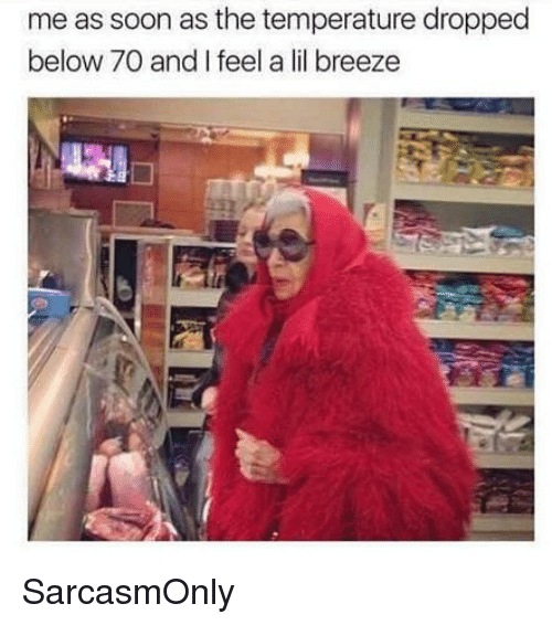 Funny, Memes, and Soon...: me as soon as the temperature dropped  below 7O and I feel a lil breeze SarcasmOnly