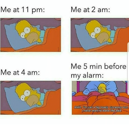 cinnamon bun: Me at 11 pm:  Me at 2 am:  Me 5 min before  my alarm  Me at 4 am:  hbh imust a bi9 toasty cinnamon bun  neverwantitoleave this bed