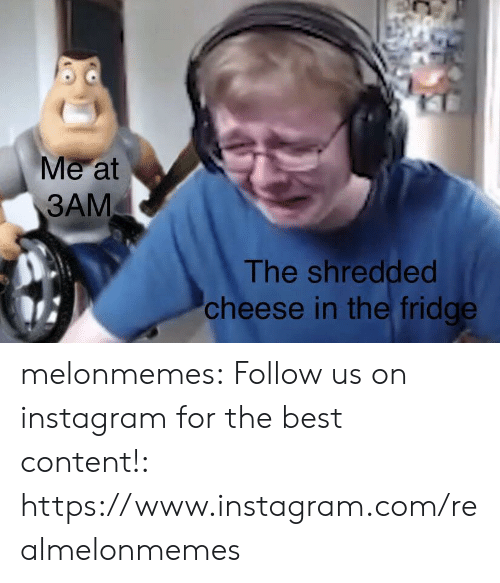 Instagram, Tumblr, and Best: Me at  3AM  The shredded  cheese in the fridge melonmemes:  Follow us on instagram for the best content!: https://www.instagram.com/realmelonmemes