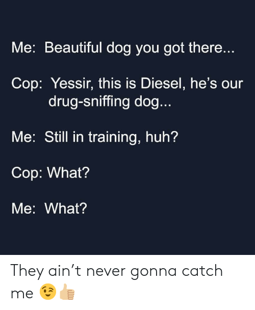 Beautiful, Huh, and Diesel: Me: Beautiful dog you got there...  Cop: Yessir, this is Diesel, he's our  drug-sniffing dog...  Me: Still in training, huh?  Cop: What?  Me: What? They ain't never gonna catch me 😉👍🏼
