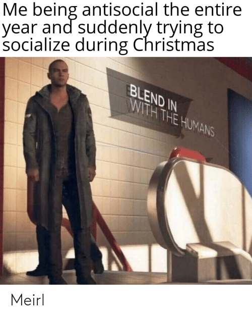 humans: Me being antisocial the entire  year and suddenly trying to  socialize during Christmas  BLEND IN  WITH THE HUMANS Meirl