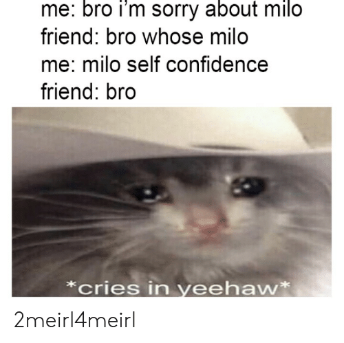 whose: me: bro i'm sorry about milo  friend: bro whose milo  me: milo self confidence  friend: bro  *cries in yeehaw* 2meirl4meirl