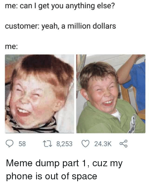 Meme, Phone, and Yeah: me: can I get you anything else?  customer: yeah, a million dollars  me:  58 t 8,253 24.3K Meme dump part 1, cuz my phone is out of space