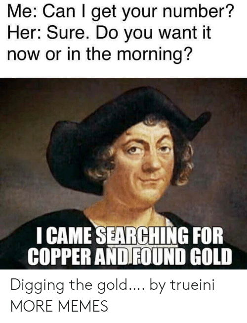 Dank, Memes, and Target: Me: Can I get your number?  Her: Sure. Do you want it  now or in the morning?  I CAME SEARCHING FOR  COPPER AND FOUND GOLD Digging the gold…. by trueini MORE MEMES