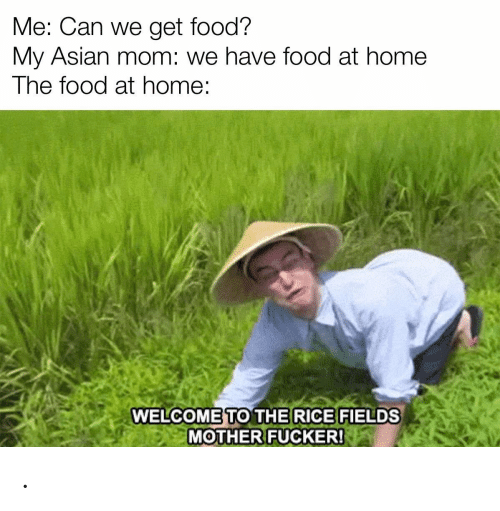 Asian, Food, and Home: Me: Can we get food?  My Asian mom: we have food at home  The food at home:  WELCOME TO THE RICE FIELDS  MOTHER FUCKER! .