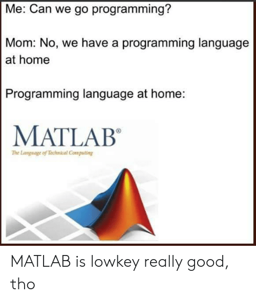 Can We Go: Me: Can we go programming?  Mom: No, we have a programming language  at home  Programming language at home:  MATLAB  The Language of Technical Computing MATLAB is lowkey really good, tho