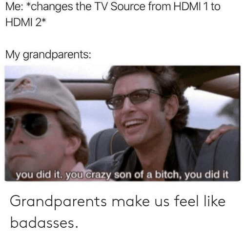hdmi: Me: *changes the TV Source from HDMI 1 to  HDMI 2*  My grandparents:  you did it. you crazy son of a bitch, you did it Grandparents make us feel like badasses.