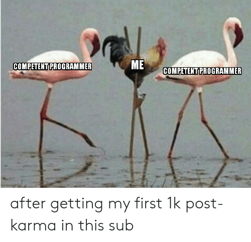 Karma, First, and Post: ME  COMPETENT PROGRAMMER  COMPETENT PROGRAMMER after getting my first 1k post-karma in this sub