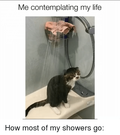 Life, Memes, and 🤖: Me contemplating my life How most of my showers go: