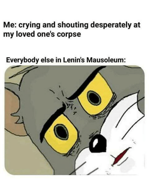 Sassy Socialast: Me: crying and shouting desperately at  my loved one's corpse  Everybody else in Lenin's Mausoleum: