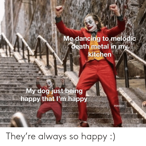 Dancing: Me dancing to melodic  death metal in my  kitchen  My dog just being  happy that l'm happy  PERFECT They're always so happy :)