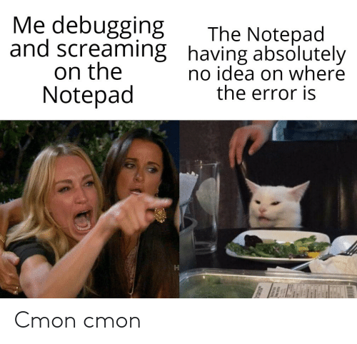 notepad: Me debugging  and screaming having absolutely  on the  Notepad  The Notepad  no idea on where  the error is Cmon cmon