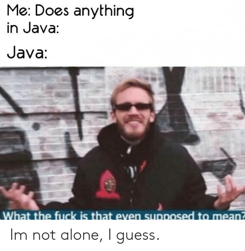 Being Alone, Fuck, and Guess: Me: Does anything  in Java:  Java  What the fuck is that even supposed to mean? Im not alone, I guess.