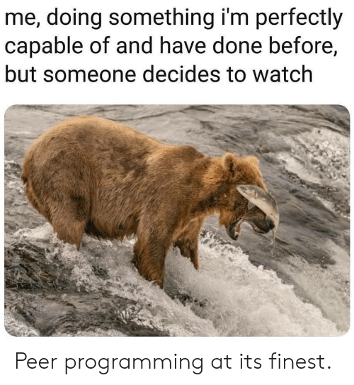 peer: me, doing something i'm perfectly  capable of and have done before,  but someone decides to watch Peer programming at its finest.