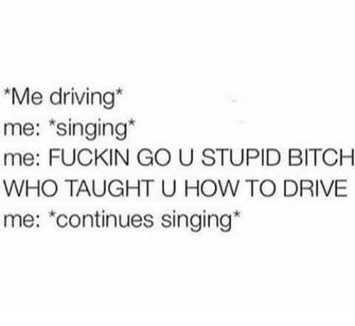 stupider: Me driving*  me: singing*  me: FUCKIN GO U STUPID BITCH  WHO TAUGHT U HOW TO DRIVE  me: *continues singing*