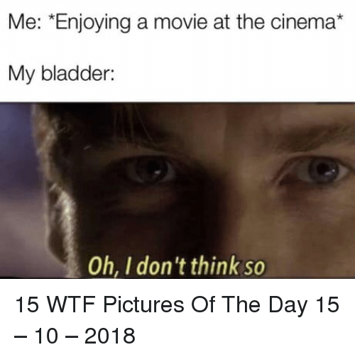 Dont Think So: Me: *Enjoying a movie at the cinema*  My bladder:  Oh, I don't think so 15 WTF Pictures Of The Day 15 – 10 – 2018