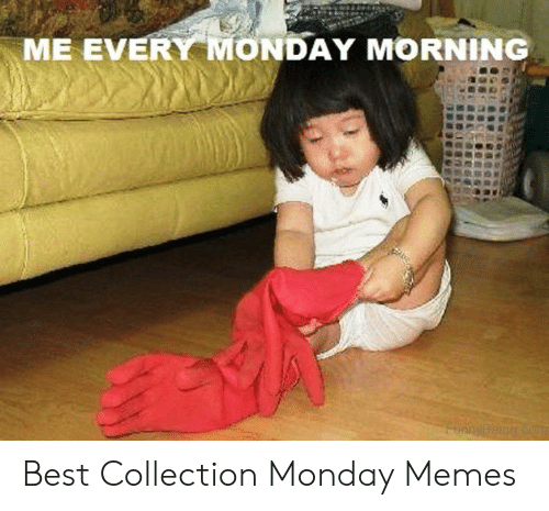 monday morning: ME EVERY MONDAY MORNING  FunnyBeing co Best Collection Monday Memes