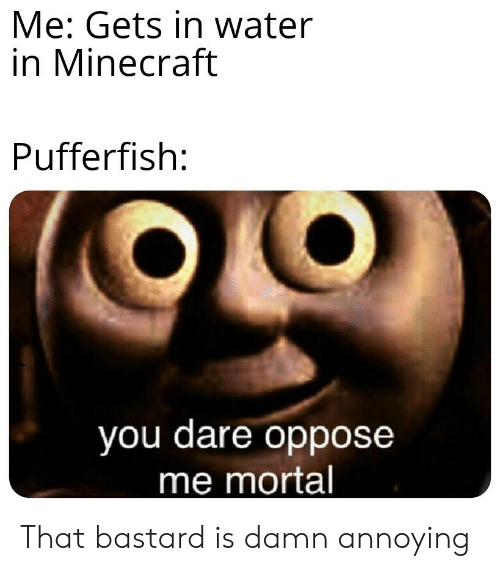 Oppose: Me: Gets in water  in Minecraft  Pufferfish:  you dare oppose  me mortal That bastard is damn annoying