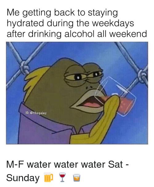 Drinking, Memes, and Alcohol: Me getting back to staying  hydrated during the weekdays  after drinking alcohol all weekend  10: @thegainz M-F water water water Sat - Sunday 🍺 🍷 🥃