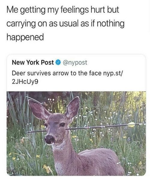 To The Face: Me getting my feelings hurt but  carrying on as usual as if nothing  happened  New York Post @nypost  Deer survives arrow to the face nyp.st/  2JHcUy9
