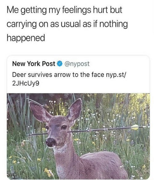 Arrow: Me getting my feelings hurt but  carrying on as usual as if nothing  happened  New York Post @nypost  Deer survives arrow to the face nyp.st/  2JHcUy9