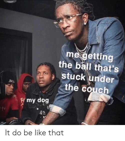 Be Like, Couch, and Dog: me getting  the ball that's  stuck under  the couch  Pmy dog It do be like that